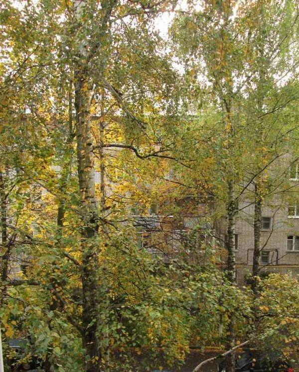 Козицкого ул, 6